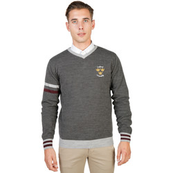 Vêtements Homme Pulls Oxford University OXFORD TRICOT-VNECK-GREY gris