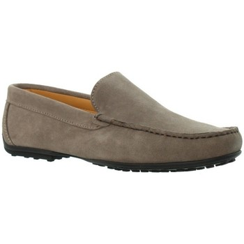 Chaussures Homme Mocassins Baxton Mocassins  ref_bom46206 Taupe marron