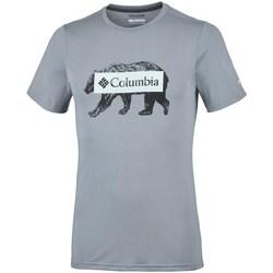 Vêtements Homme T-shirts manches courtes Columbia Box Logo Bear Gris