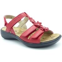 Chaussures Femme Sandales et Nu-pieds Romika Westland IBIZA 95 ROUGE