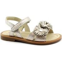 Chaussures Fille Sandales et Nu-pieds Balocchi BAL-E19-496490-CO-a Oro