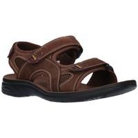 Chaussures Homme Sandales sport Paredes VP18142 MA Hombre Marron marron