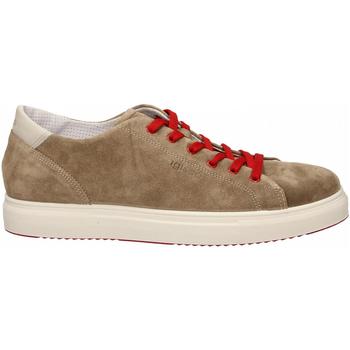Chaussures Homme Baskets basses Igi&co USH 31327 tortora