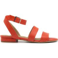 Chaussures Femme Sandales et Nu-pieds Peta Collab Green Gatria Coral Orange