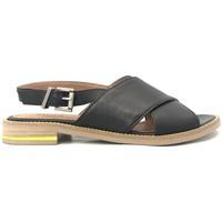 Chaussures Femme Sandales et Nu-pieds Ngy sandales SONIA Sauvage Noir Noir