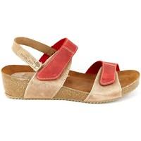 Chaussures Femme Sandales et Nu-pieds Interbios 5343 BEIG-ROJO Bios