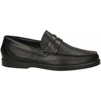 Chaussures Homme Mocassins IgI&CO UCE 31095 nero