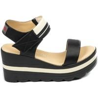 Chaussures Femme Sandales et Nu-pieds Chattawak sandales 7-PAVOT Noir Noir