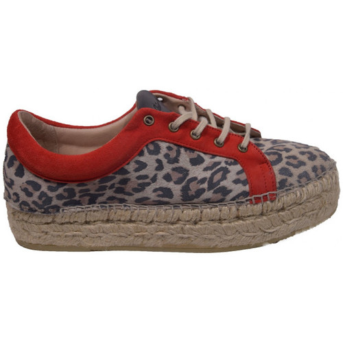 Chaussures Femme Baskets basses Gaimo dania Multicolor