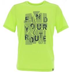 Vêtements Homme T-shirts manches courtes Odlo Mill element acidlime tee Vert fluorescent