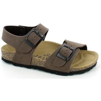 Chaussures Garçon Nouveautés de ce mois Gold Star 1805.02_33 Marron
