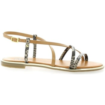Chaussures Femme Sandales et Nu-pieds Pao Nu pieds cuir python Taupe