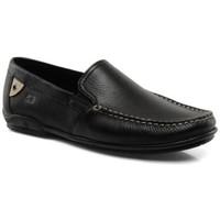 Chaussures Homme Mocassins Fluchos mocassin baltico 7149 Noir