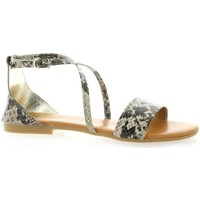 Chaussures Femme Sandales et Nu-pieds Pao Nu pieds  serpent Taupe