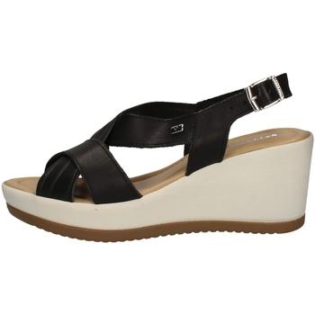 Chaussures Femme Sandales et Nu-pieds Valleverde 32344 Noir