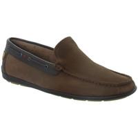 Chaussures Homme Mocassins Tucs Mocassins  ref_tom46260 Taupe Marron