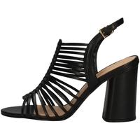 Chaussures Femme Sandales et Nu-pieds Vicenza 3959500 NOIR