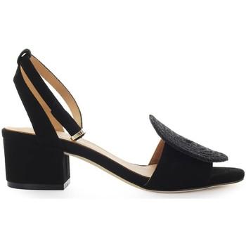 Chaussures Femme Sandales et Nu-pieds Paloma Barcelò Nolane Black