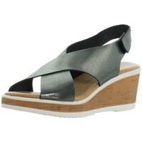 Chaussures Femme Sandales et Nu-pieds Marila Compensées  ref_46324 Multi noir