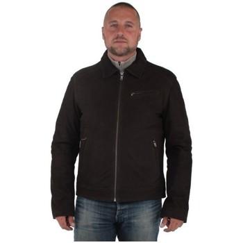 Vêtements Homme Blousons Daytona Blouson  Oliveira Cow Madison en cuir ref_d Marron