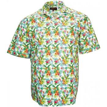 Vêtements Homme Chemises manches courtes Doublissimo chemisette imprimee hawai vert Vert