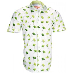 Vêtements Homme Chemises manches courtes Andrew Mc Allister chemisettes mode greenway vert Vert