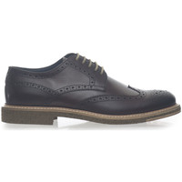 Chaussures Homme Derbies & Richelieu Angelo Nardelli 82277-G847170 testa di moro
