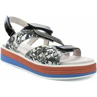 Chaussures Femme Sandales et Nu-pieds Laura Vita Focugereso 002 Noir