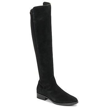 Chaussures Femme Cuissardes Clarks PURE CADDY Noir