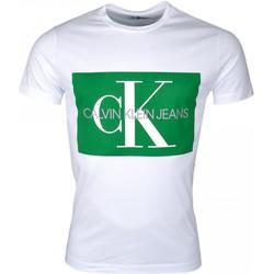 Vêtements Homme T-shirts manches courtes Calvin Klein Jeans T-shirt col rond  blanc à carré vert pour homme Blanc