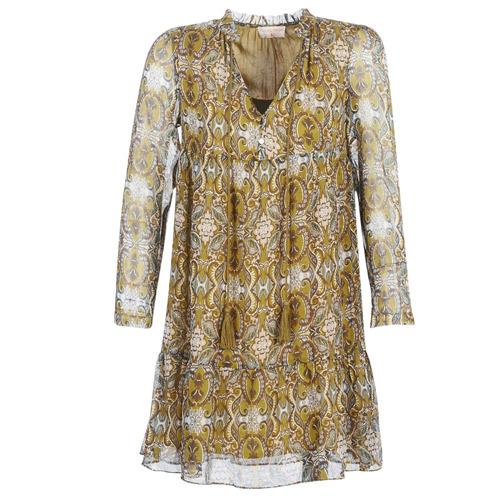 Vêtements Femme Robes courtes Moony Mood LONI Jaune