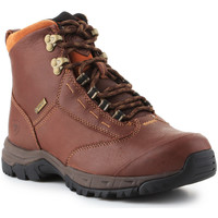 Chaussures Femme Boots Ariat Berwick lace GTX Insulated 10016298 brązowy