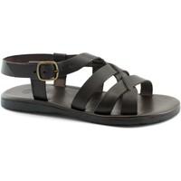 Chaussures Homme Sandales et Nu-pieds Zeus ZEU-CCC-1137-TM Marrone