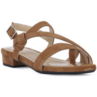 Chaussures Femme Sandales et Nu-pieds Frau CAMOSCIO SELLA Marrone