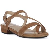 Chaussures Femme Sandales et Nu-pieds Frau CAMOSCIO NERO Nero