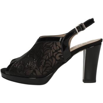 Chaussures Femme Sandales et Nu-pieds Comart 302924 NOIR