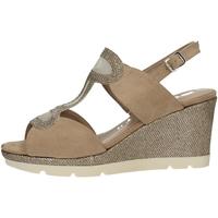 Chaussures Femme Sandales et Nu-pieds Comart 512884 SABLE