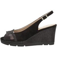 Chaussures Femme Sandales et Nu-pieds Comart 512885 NOIR