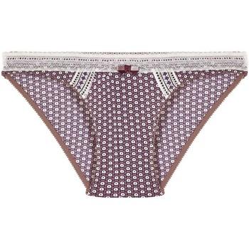 Sous-vêtements Femme Culottes & slips Pommpoire Culotte noisette/prune Frozen Beige