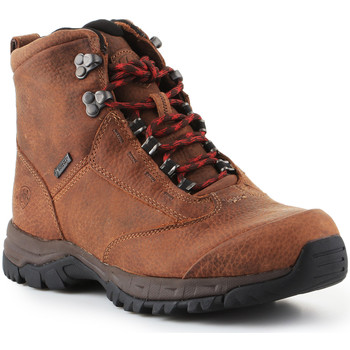 Chaussures Femme Randonnée Ariat Berwick Lace Gtx Insulated 10016229 brązowy