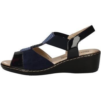 Chaussures Femme Sandales et Nu-pieds Romagnoli B9E7804 BLEU