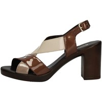 Chaussures Femme Sandales et Nu-pieds Romagnoli B9E7802 MARRON