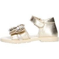 Chaussures Fille Sandales et Nu-pieds Falcotto - Sandalo platino PUPPY PLATINO