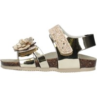 Chaussures Fille Sandales et Nu-pieds Gold Star - Sandalo platino 8864X ARGENTO