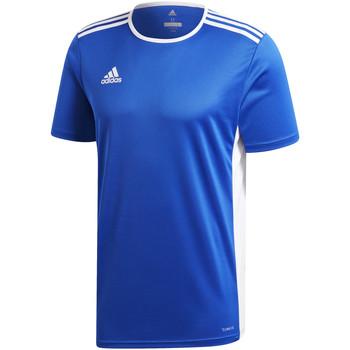 Vêtements Garçon T-shirts manches courtes adidas Originals - T-shirt azzurro CF1037 AZZURRO