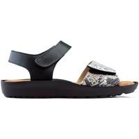 Chaussures Femme Sandales et Nu-pieds Dtorres Sandales DORRES BLANES 06 ARGENT