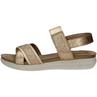 Chaussures Femme Sandales et Nu-pieds Inblu MP 3 PLATINUM