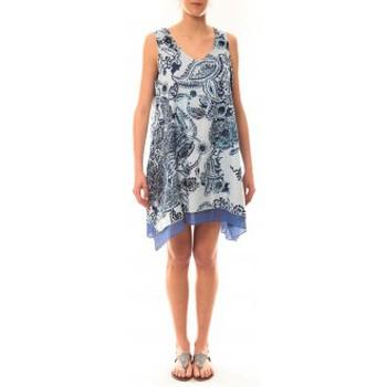 Vêtements Femme Robes courtes Palme Robe Tasmanie 49496 Bleu Bleu