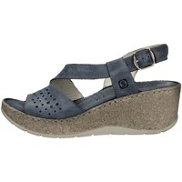 Chaussures Femme Sandales et Nu-pieds Sintonie AS5001 BLEU