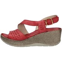 Chaussures Femme Sandales et Nu-pieds Sintonie AS5001 ROUGE